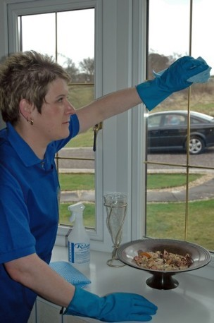 Cleaner Cleaning Windows in Home